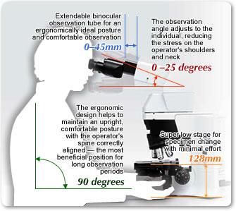 Microscope Ergonomics Basic Microscope Ergonomics